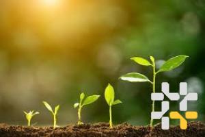 Снимка номер 1 за Търсите бизнес проекти за инвестиции.