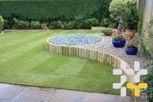 Снимка номер 4 за Озеленител, поддръжка на зелени площи!